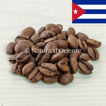 Caffè Cuba [natura d'oriente]