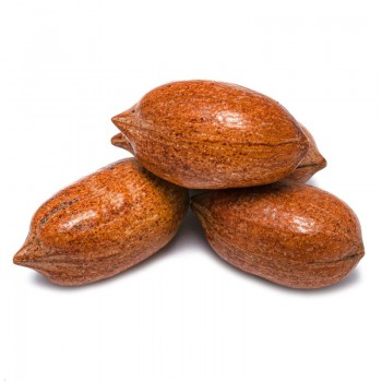 Pecan nuts with shell