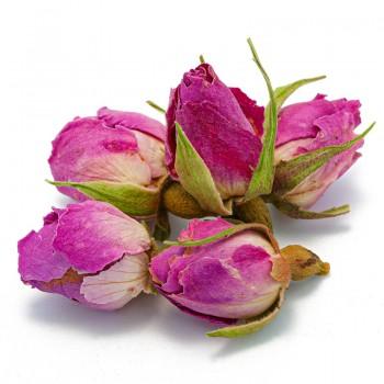 Boccioli di rosa [Natura d'Oriente]