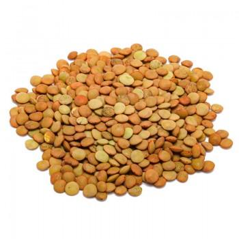 Eston lentils