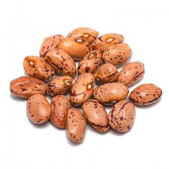 Borlotti beans type Lamon...