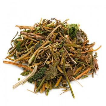 Gynostemma Pentaphyllum Tea...