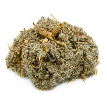Absinthe for herbal tea