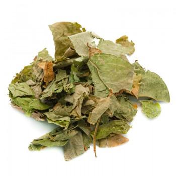 Desmodium leaves cut herbal...