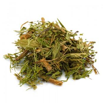 Stevia rebaudiana herbal...