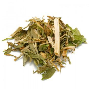 Bacopa Monnieri Herbal Tea...